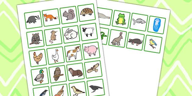 British Wildlife Small Image Cards - british, wildlife, animals