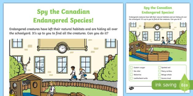 Spy the Endangered Canadian Species Activity Sheet, worksheet