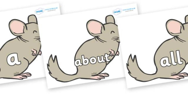 100 High Frequency Words on Chinchillas - High frequency words, hfw, DfES Letters and Sounds, Letters and Sounds, display words