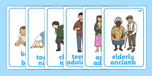 Human Growth Display Posters Spanish Translation - spanish, Growth Topic, Grow, Ourselves, All About Me, Growing, baby, child, adult, growing up, age, old, young
