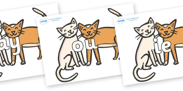 Phase 5 Phonemes on Cats - Phonemes, phoneme, Phase 5, Phase five, Foundation, Literacy, Letters and Sounds, DfES, display