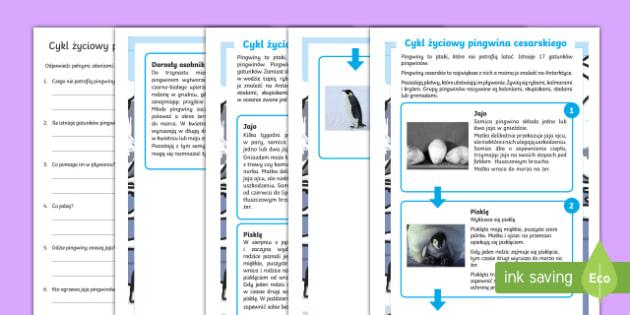 Czytanie ze zrozumieniem Cykl życiowy pingwina cesarskiego - pingwin, zima, lód, pingwiny, cesarski, zwierzęta, polarne, Antarktyda, Antarktyka, biegun, śnieg