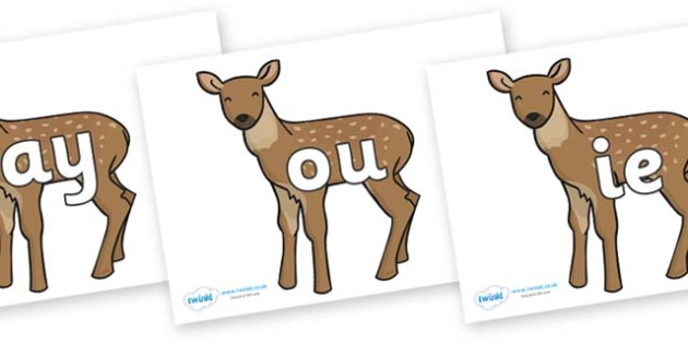 Phase 5 Phonemes on Fawns - Phonemes, phoneme, Phase 5, Phase five, Foundation, Literacy, Letters and Sounds, DfES, display
