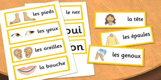 French My Body Word Cards - french, word, cards, my body, body