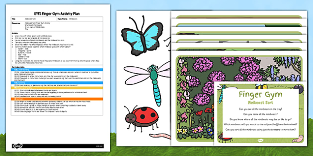 EYFS Minibeast Sort Finger Gym Activity Plan and Resource Pack - minibeast, gym