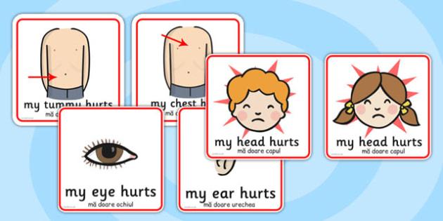 Parts of the Body Communication Cards Romanian Translation - romanian