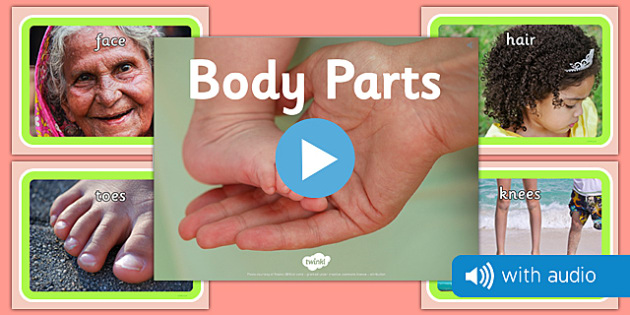 Parts of the Body Audio Flashcards - parts of the body, flashcards, flash cards, narrated