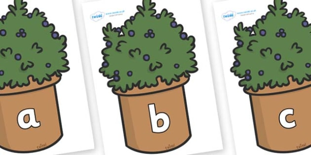 Phase 2 Phonemes on Plants - Phonemes, phoneme, Phase 2, Phase two, Foundation, Literacy, Letters and Sounds, DfES, display