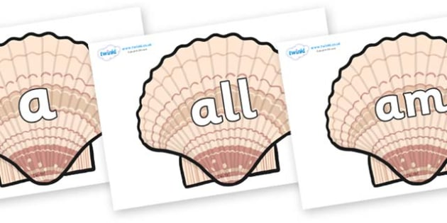 Foundation Stage 2 Keywords on Seashells - FS2, CLL, keywords, Communication language and literacy,  Display, Key words, high frequency words, foundation stage literacy, DfES Letters and Sounds, Letters and Sounds, spelling