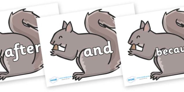Connectives on Grey Squirrels - Connectives, VCOP, connective resources, connectives display words, connective displays