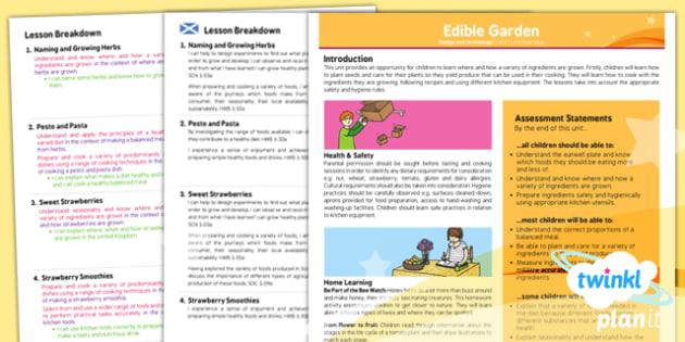 D&T: Edible Garden LKS2 Planning Overview CfE