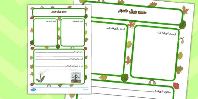 اطار كتابة جمع أوراق الشجر- ورق الشجر، موارد تعليمية، جمع ورق شجر