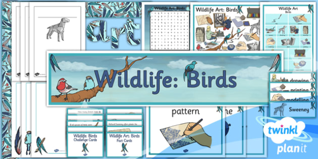 Art: Wildlife UKS2 Unit Additional Resources
