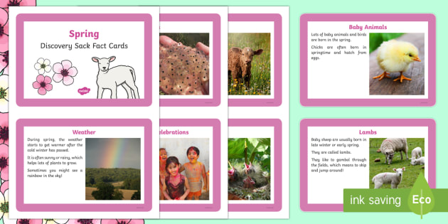 EYFS Spring Fact Cards - EYFS, Early Years, season, non-fiction, animals, new life, growth, festivals