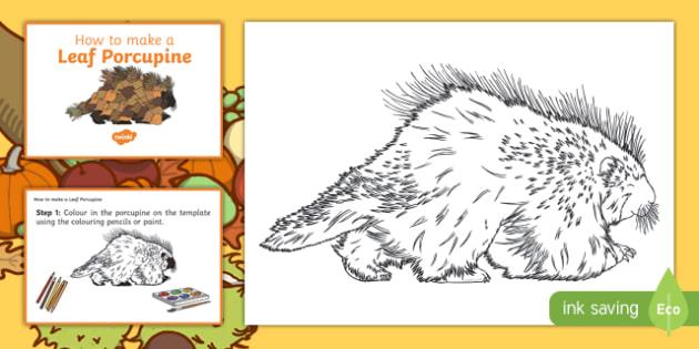 Leaf Porcupine Craft Instructions