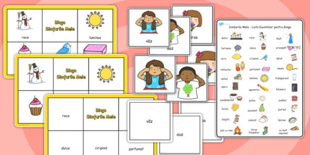 Bingo, Simțurile Mele - joc, științe, cele cinci simțuri, imagini, Romanian