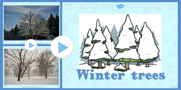 Winter Trees Photo PowerPoint - winter, trees, photo, powerpoint
