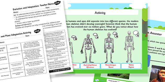 Evolution and Adaptation Year 4 Task Setter PowerPoint - adaptation, evolution, task setter, powerpoint, task setter powerpoint, year 4, year four