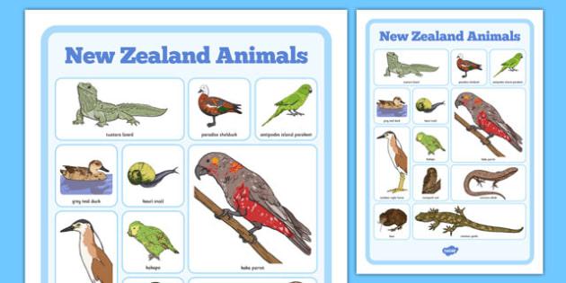 New Zealand Animals Word Grid