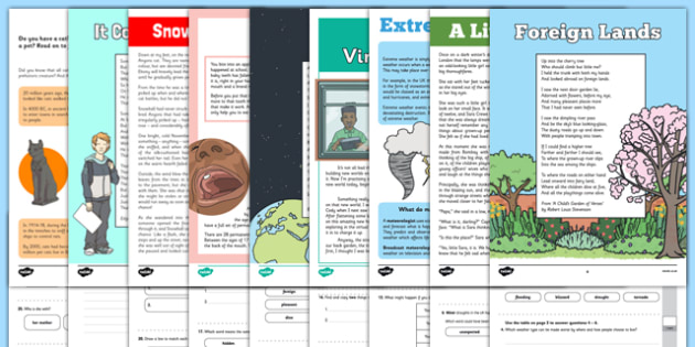 Year 4 Reading Assessments Pack - year 4, reading, assessments, pack, reading assessment, read