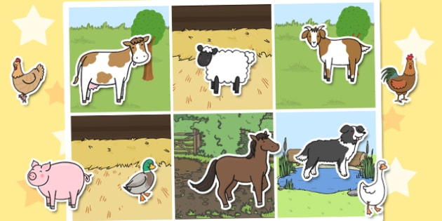 Twinkl Farm Animal Colouring Pages : Animal sorting activity farm animal sorting activity