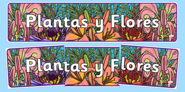 Plants and Flowers Display Banner Spanish - spanish, plants and flowers, IPC display banner, IPC, plants and flowers display banner, IPC display