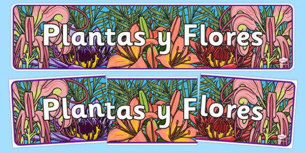 Pancarta - Las plantas y las flores - crecimiento, jardín, decoración, mural, temario