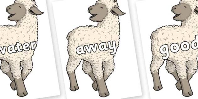 Next 200 Common Words on Lamb - Next 200 Common Words on  - DfES Letters and Sounds, Letters and Sounds, Letters and sounds words, Common words, 200 common words