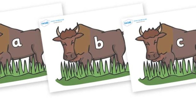 Phase 2 Phonemes on Bison - Phonemes, phoneme, Phase 2, Phase two, Foundation, Literacy, Letters and Sounds, DfES, display