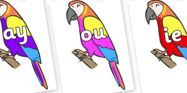 Phase 5 Phonemes on Macaws - Phonemes, phoneme, Phase 5, Phase five, Foundation, Literacy, Letters and Sounds, DfES, display