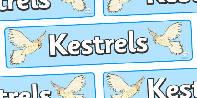 Kestrels Display Banner - kestrel class, class banner, class display, kestrels, classroom banner, classroom areas signs, areas, display banner, display