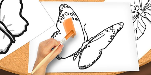 Butterfly Shapes Cut Outs - butterfly, shapes, cut outs, cut, outs