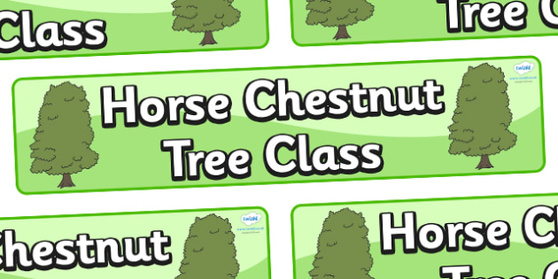 Horse Chestnut Tree Themed Classroom Display Banner - Themed banner, banner, display banner, Classroom labels, Area labels, Poster, Display, Areas
