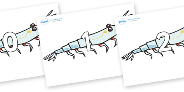 Numbers 0-31 on Plankton - 0-31, foundation stage numeracy, Number recognition, Number flashcards, counting, number frieze, Display numbers, number posters