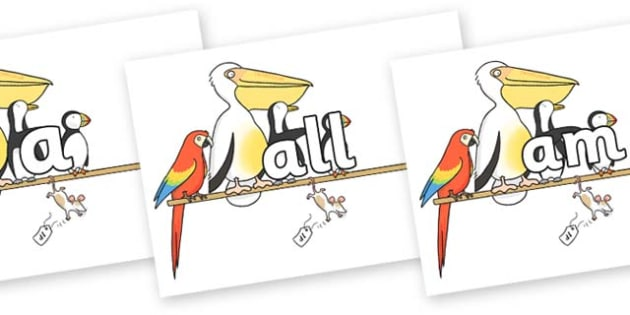 Foundation Stage 2 Keywords on Pets on a Perch to Support Teaching on The Great Pet Sale - FS2, CLL, keywords, Communication language and literacy,  Display, Key words, high frequency words, foundation stage literacy, DfES Letters and Sounds, Letters