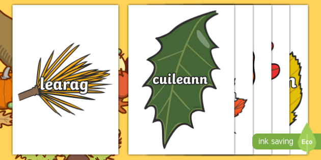 Autumn Leaves With Names Display Cut Outs Gaelige - crafts, art, nature, trees, September, October, topics, harvest