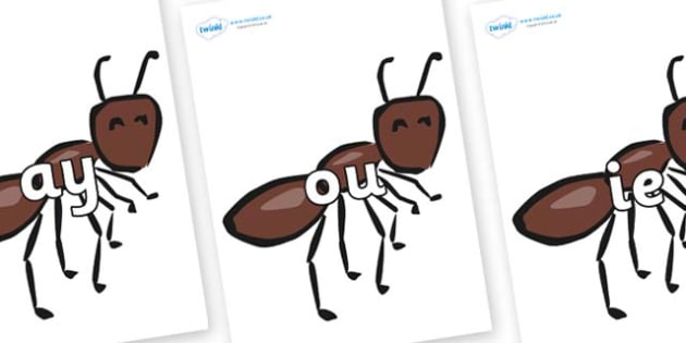 Phase 5 Phonemes on Ants - Phonemes, phoneme, Phase 5, Phase five, Foundation, Literacy, Letters and Sounds, DfES, display