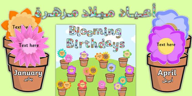 Blooming Birthdays Flower Display Pack Arabic Translation - arabic, birthdays, display, pack