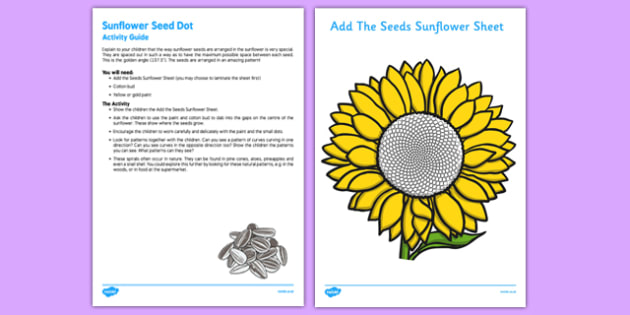 Sunflower Seed Dot Busy Bag Resource Pack for Parents - flower, flowers, paint, cotton bud, fibonacci, spiral, golden angle, golden ratio