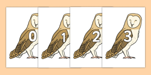 Numbers 0-31 on Owls - 0-31, foundation stage numeracy, Number recognition, Number flashcards, counting, number frieze, Display numbers, number posters