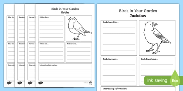 Birds in Your Garden Fact File Activity Sheet, worksheet