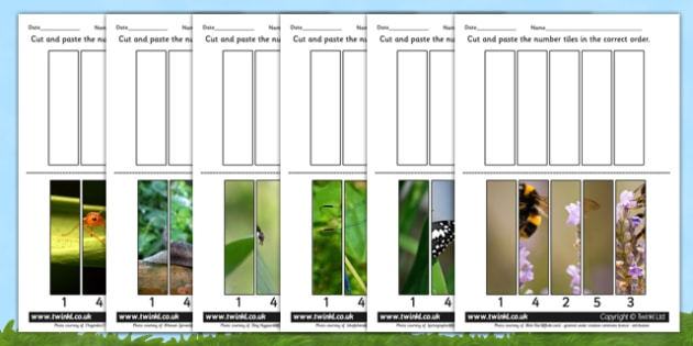 Minibeast Themed Number Sequencing Photo Puzzles - minibeasts