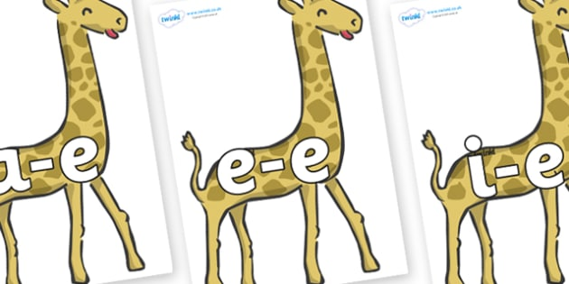 Modifying E Letters on Giraffe - Modifying E, letters, modify, Phase 5, Phase five, alternative spellings for phonemes, DfES letters and Sounds