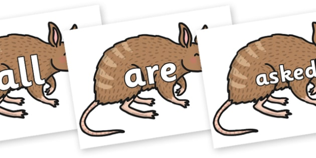 Tricky Words on Bandicoot - Tricky words, DfES Letters and Sounds, Letters and sounds, display, words
