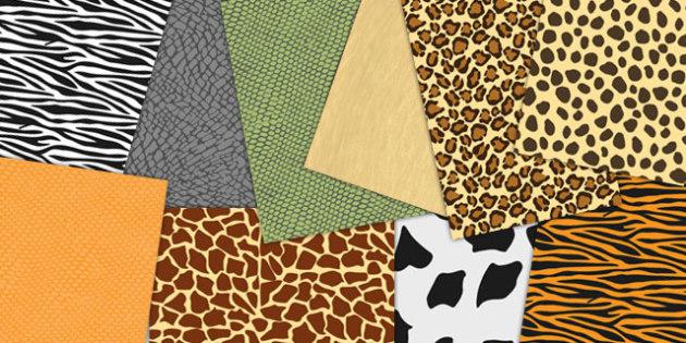 Animal Skin Patterned A4 Sheets - animal, skins, pattern