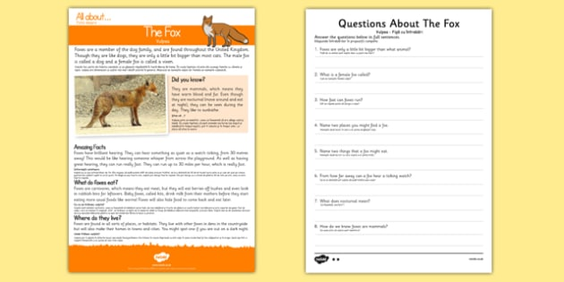 Fox Reading Comprehension Romanian Translation - romanian, Reading comprehension, fox, find, locate, read, comprehend, fact, title, fact file, information, question