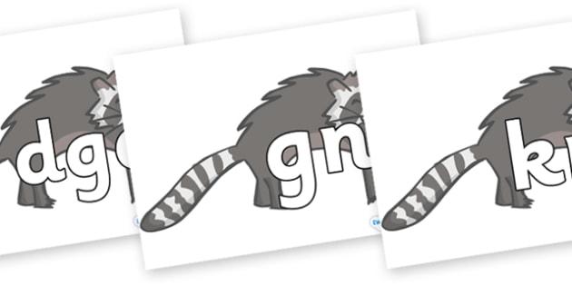 Silent Letters on Raccoons - Silent Letters, silent letter, letter blend, consonant, consonants, digraph, trigraph, A-Z letters, literacy, alphabet, letters, alternative sounds