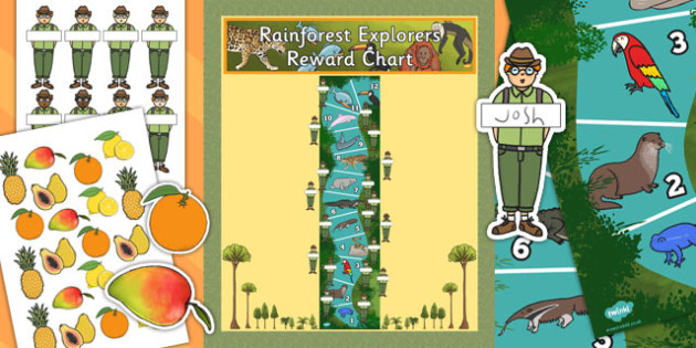 Rainforest Explorers Reward Display Pack - rainforest, explorers