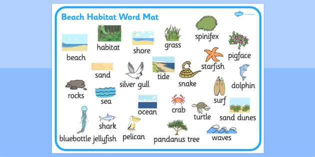 Australian Beach Habitat Word Mat - australia, Science, Year 1, Habitats, Australian Curriculum, Beach, Living, Living Adventure, Environment, Living Things, Animals, Plants, Word Mat