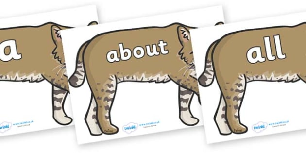 100 High Frequency Words on Bobcats - High frequency words, hfw, DfES Letters and Sounds, Letters and Sounds, display words